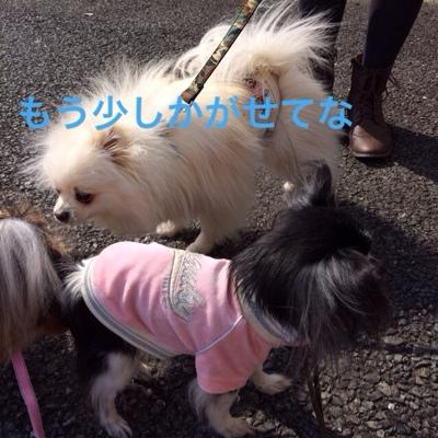fc2blog_20140309215049db4.jpg
