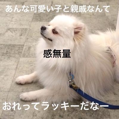 fc2blog_20140311201750ffd.jpg