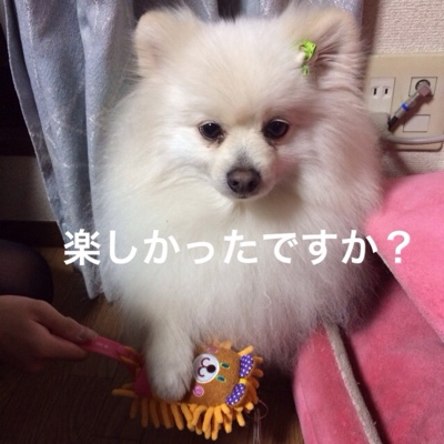 fc2blog_201403132309412d8.jpg
