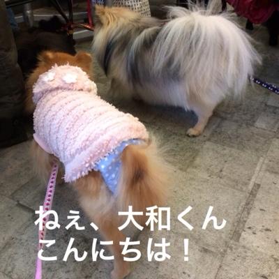 fc2blog_20140314202838933.jpg