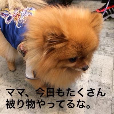 fc2blog_201403172049166af.jpg