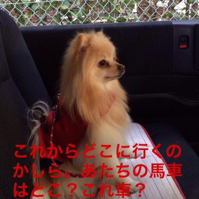 fc2blog_201403191919515d5.jpg