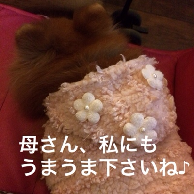 fc2blog_20140320185853594.jpg