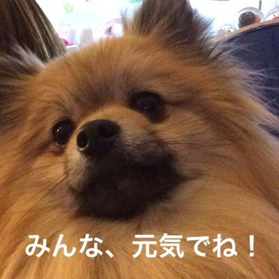 fc2blog_20140320190411e8c.jpg