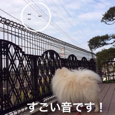 fc2blog_2014032222065375b.jpg