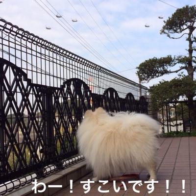 fc2blog_20140322220725ffe.jpg