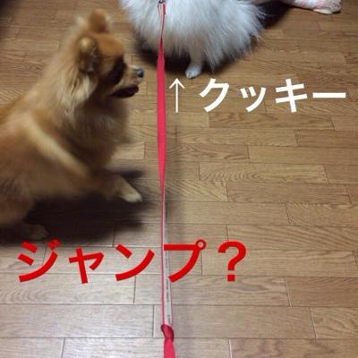 fc2blog_201403251815187e6.jpg