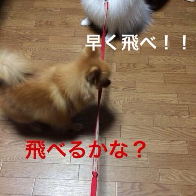 fc2blog_20140325181743813.jpg