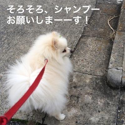 fc2blog_20140327214018a11.jpg