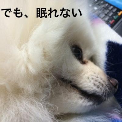 fc2blog_20140328203604ebf.jpg