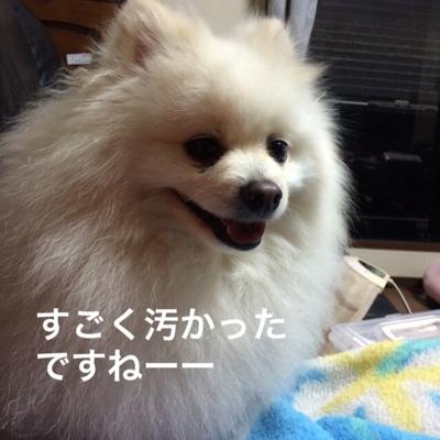 fc2blog_20140331145036853.jpg