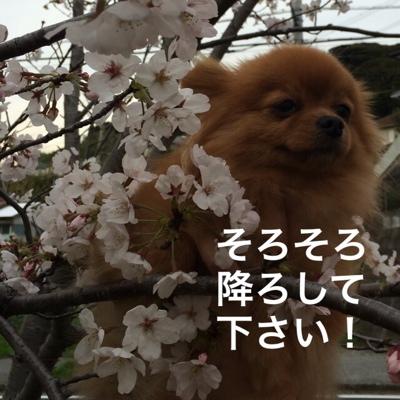 fc2blog_20140401114834978.jpg