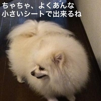 fc2blog_20140404200738a26.jpg