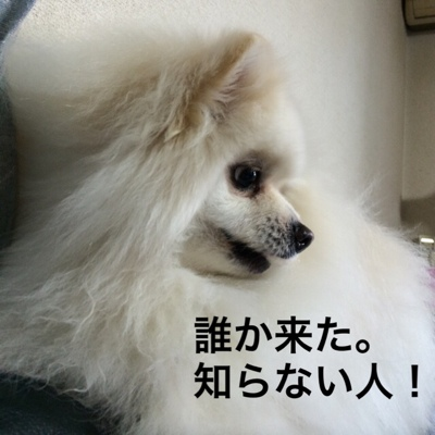fc2blog_201404131700189a1.jpg