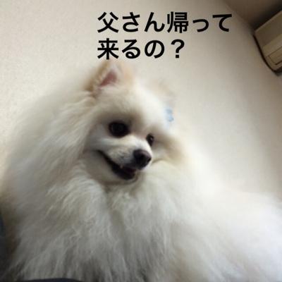 fc2blog_201404131701431c1.jpg