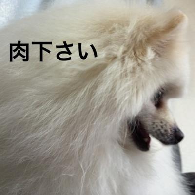 fc2blog_2014041317040563c.jpg