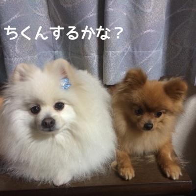 fc2blog_20140417202808b32.jpg