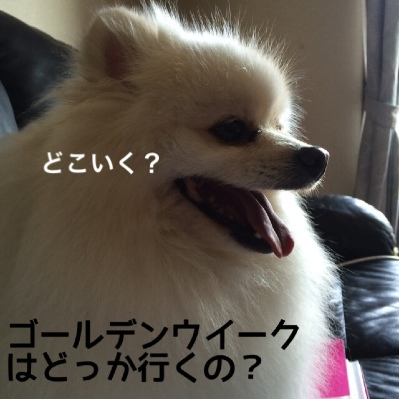 fc2blog_20140424203519c39.jpg