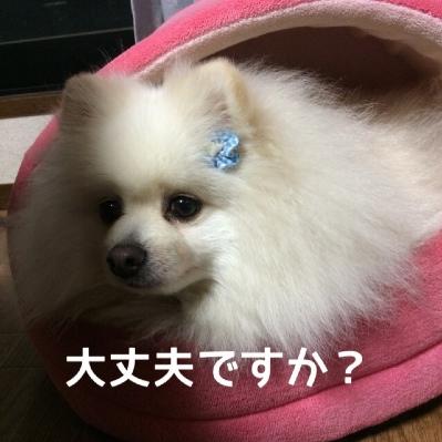 fc2blog_201404251847217e3.jpg
