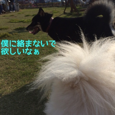 fc2blog_2014042718040961a.jpg