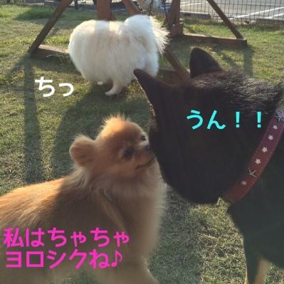 fc2blog_20140427180542ca1.jpg