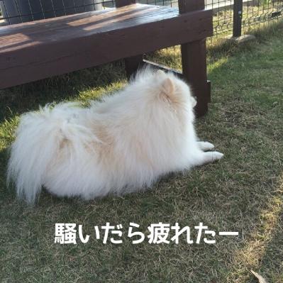 fc2blog_201404282112251df.jpg