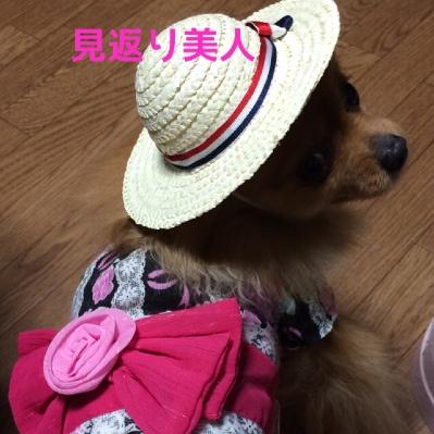 fc2blog_2014050121192054a.jpg