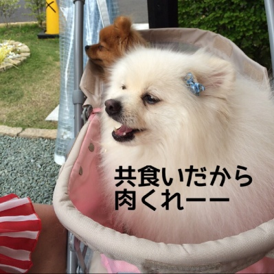 fc2blog_201405031941042dc.jpg
