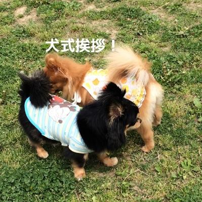 fc2blog_20140509194546eda.jpg