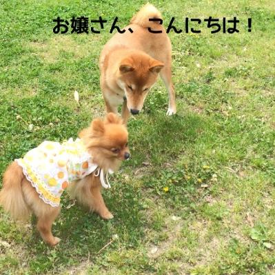 fc2blog_20140509194613651.jpg
