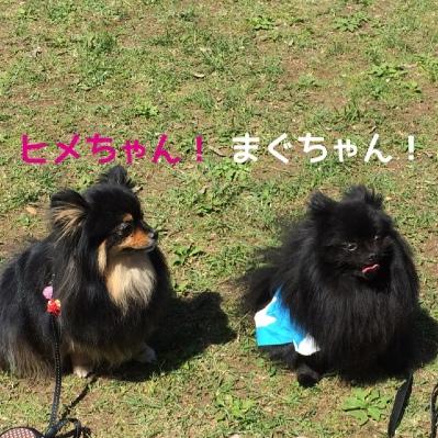 fc2blog_20140519205313237.jpg