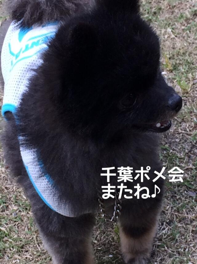 fc2blog_2014052413141585a.jpg