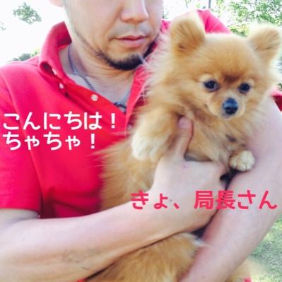 fc2blog_20140531204031b16.jpg
