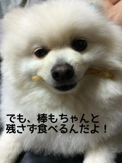 fc2blog_20140606210054502.jpg