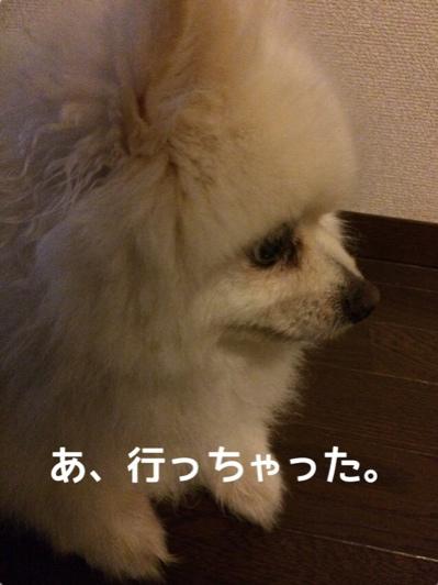 fc2blog_20140609195317102.jpg
