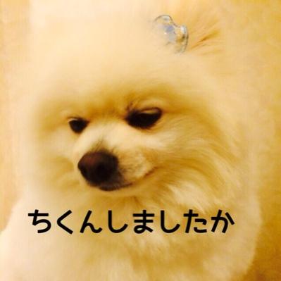 fc2blog_201406101959378bd.jpg