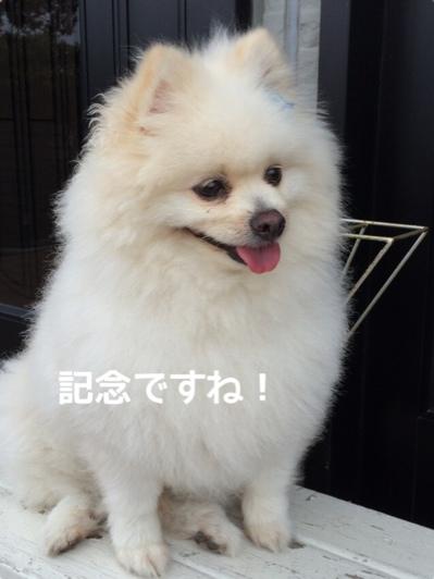 fc2blog_20140611215527a3c.jpg
