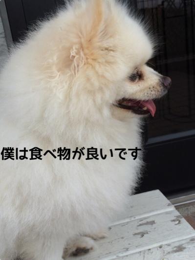fc2blog_20140611220329c2f.jpg