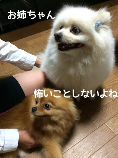 fc2blog_2014061222010024a.jpg