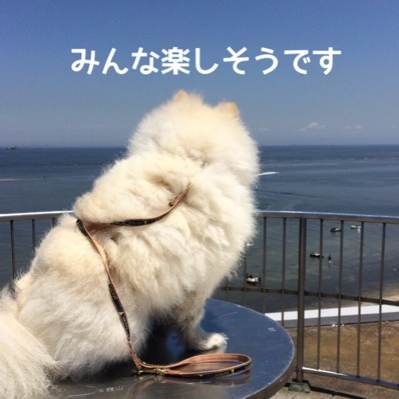 fc2blog_20140621184534413.jpg