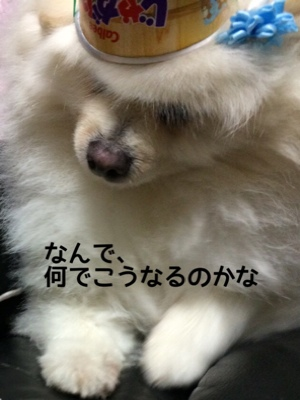 fc2blog_2014070514395183c.jpg