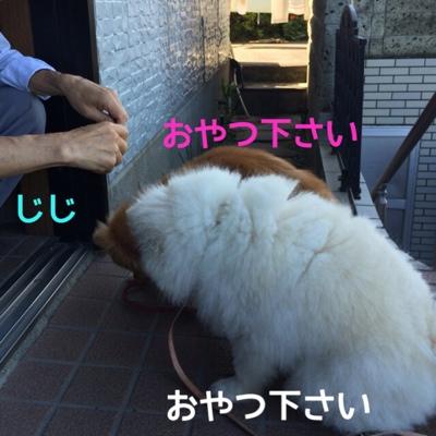 fc2blog_20140706203646072.jpg