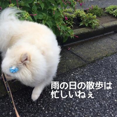 fc2blog_20140709211551de5.jpg