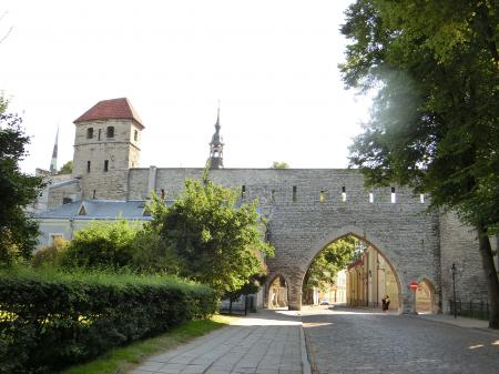 Tallinn Old Town 6