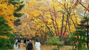 中島公園その2