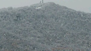 白い藻岩山