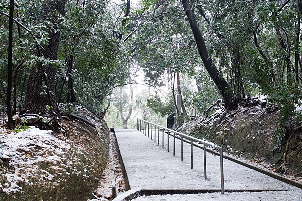 雪の興正寺-2