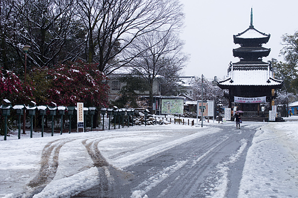 雪の興正寺-3