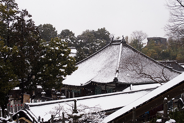 雪の興正寺-5