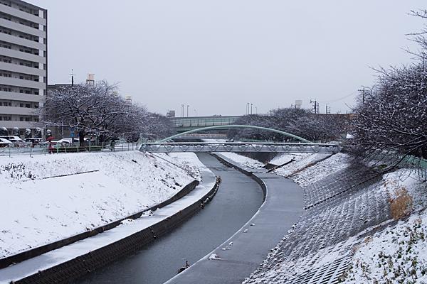 名残の雪-2